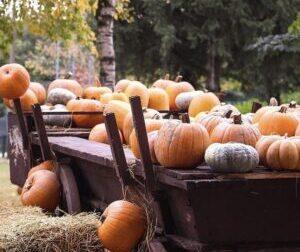 Primo week-end di ottobre, appuntamento al Villaggio delle Zucche per festeggiare l'autunno